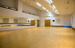 Main Dance/Exercise Studio - with mirror and barre.